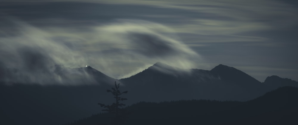 silhouette of trees and mountains under white clouds