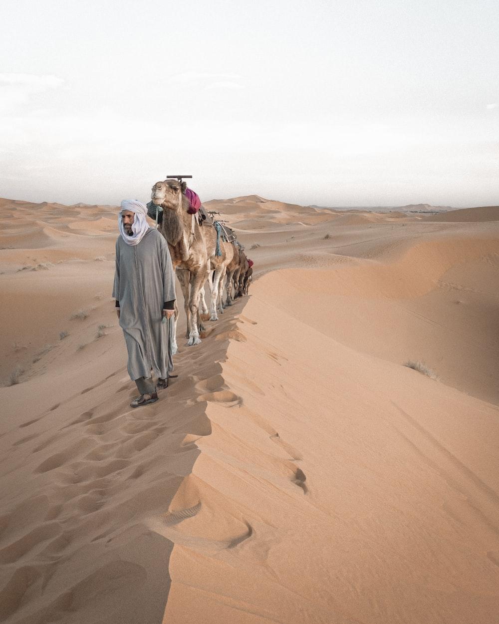 2 men walking on desert during daytime