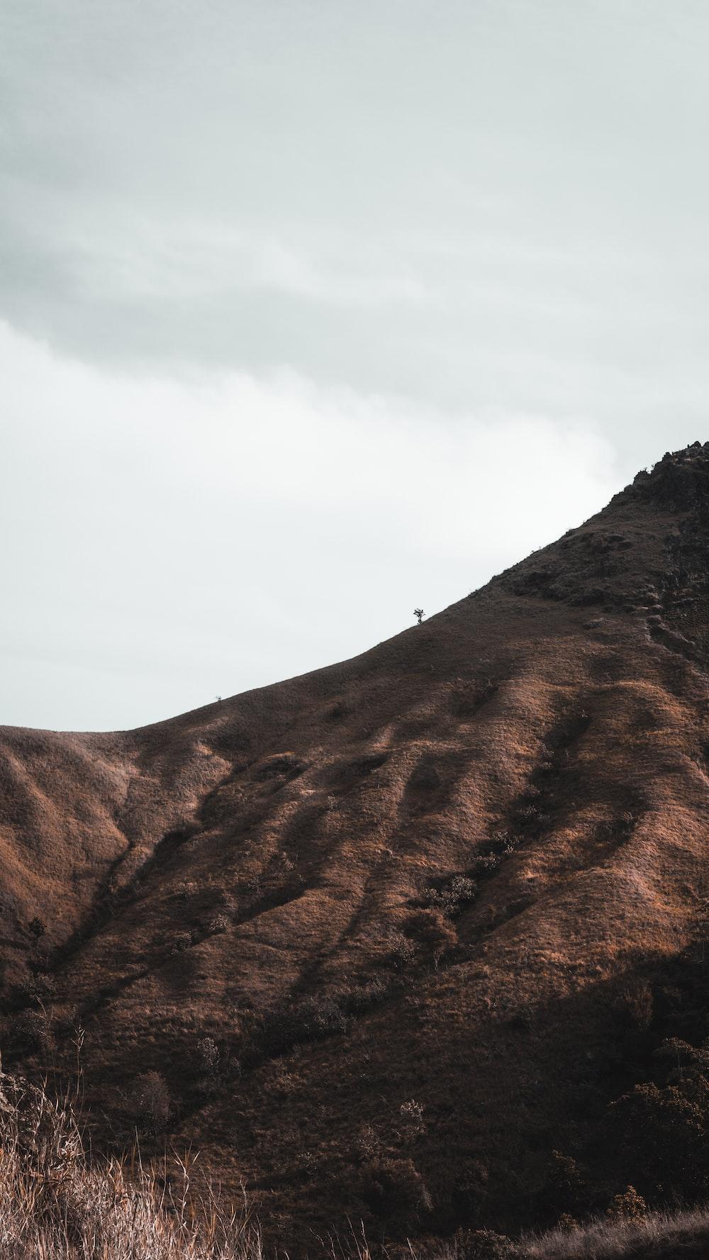 people walking on brown mountain during daytime