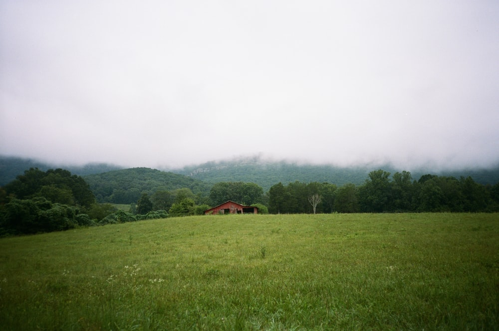 green grass field near brown house during daytime