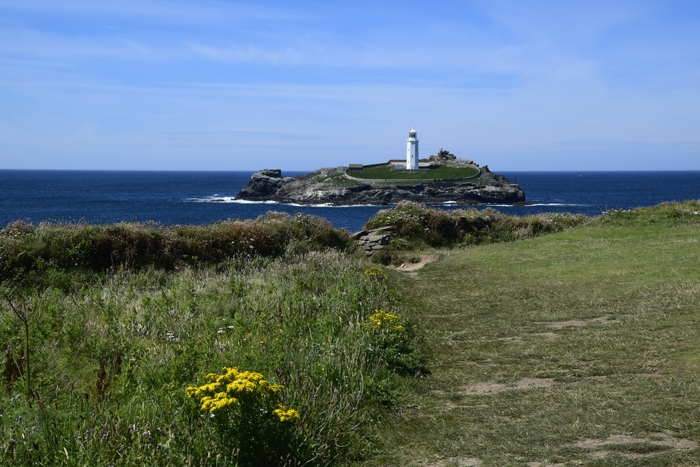 yellow flowers on green grass field near white lighthouse under blue sky during daytime