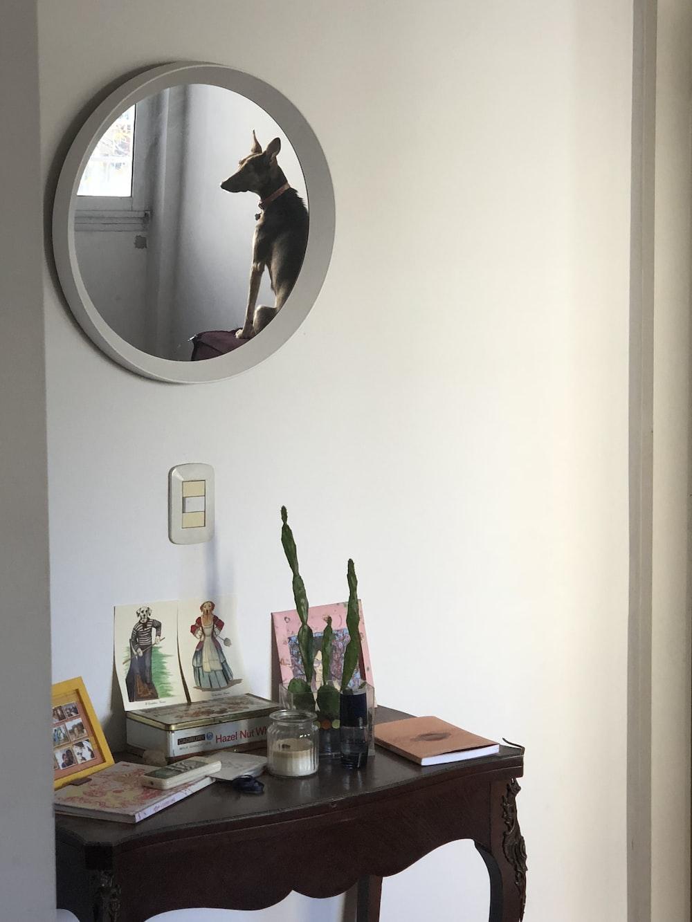 white round wall mirror on white wall