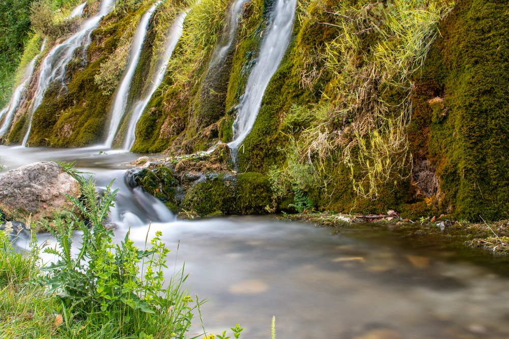 water falls on brown grass