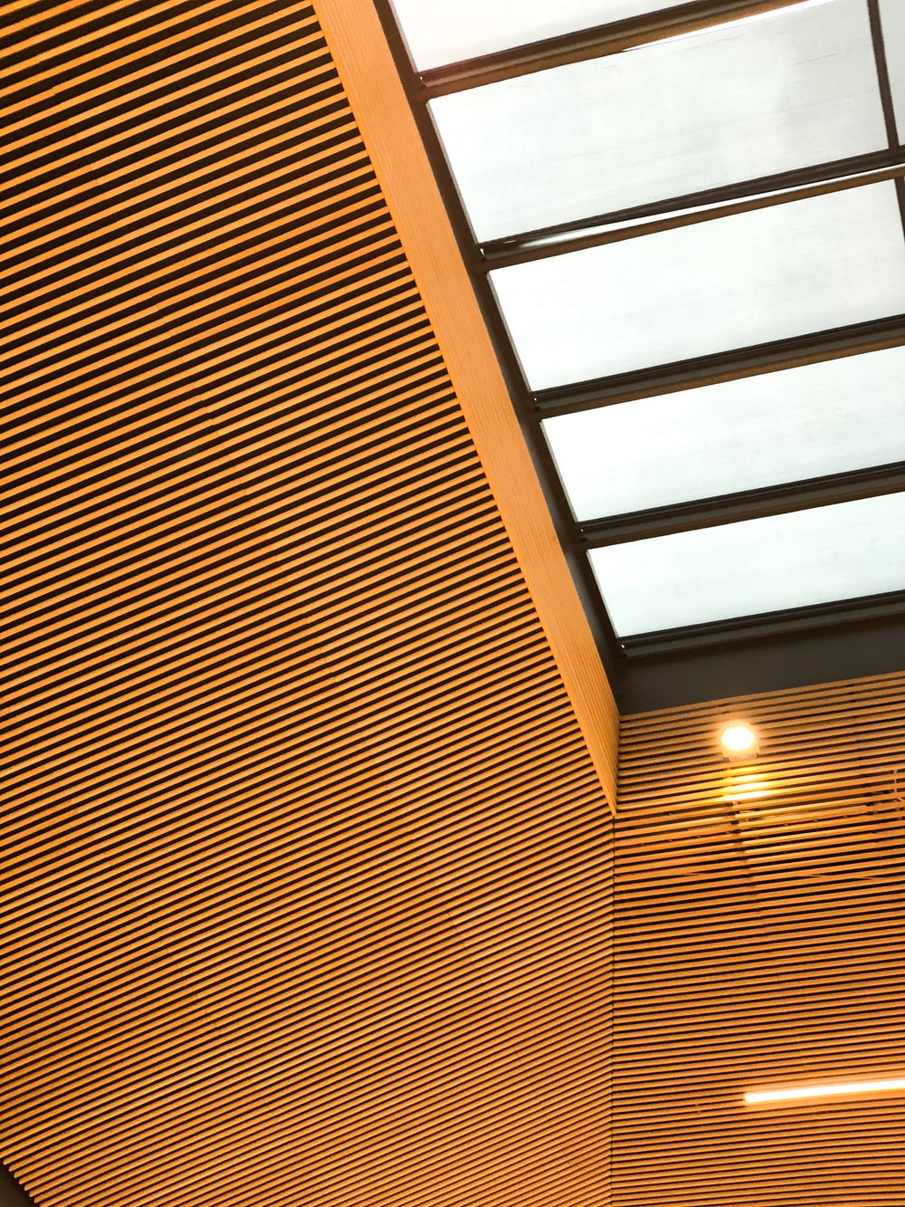 brown and white wooden ceiling