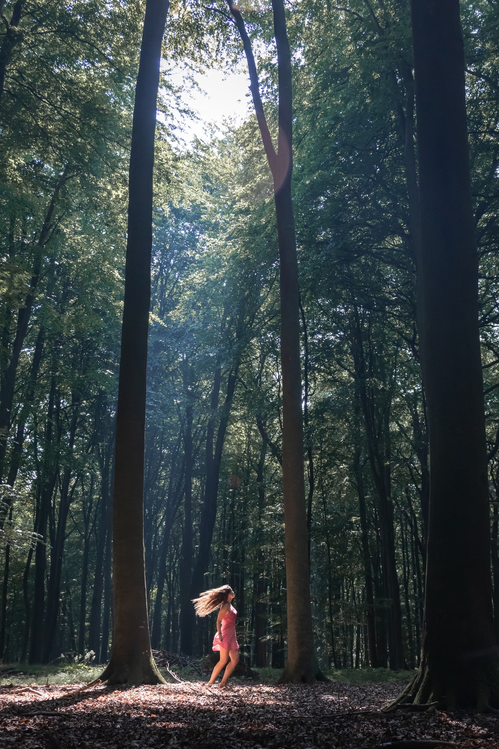 woman in white dress standing in the middle of the forest during daytime