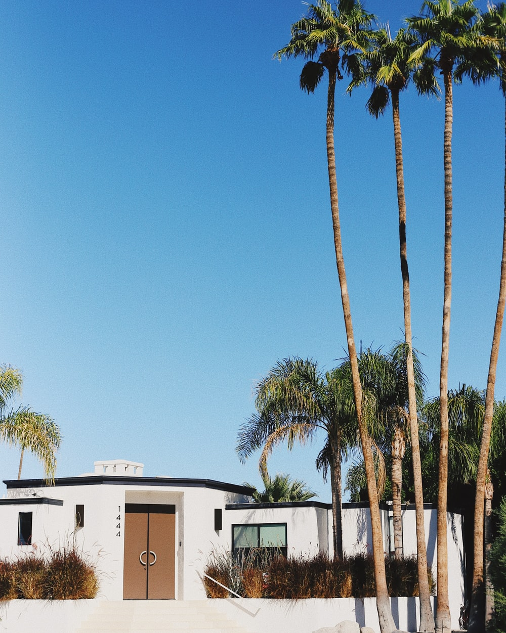 white and brown house near palm trees under blue sky during daytime