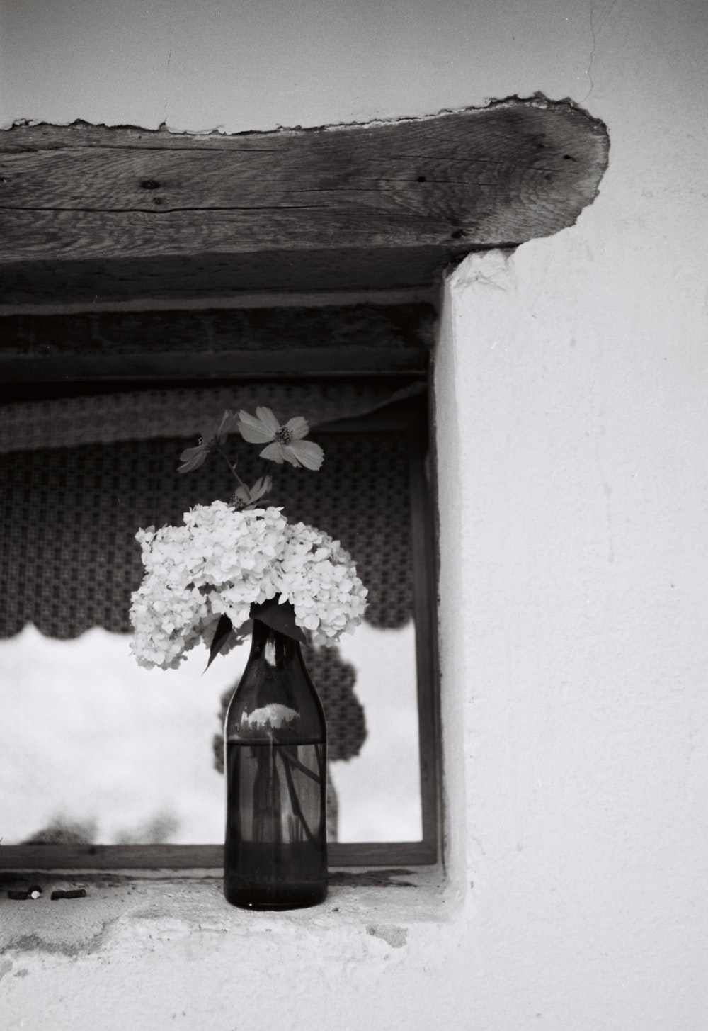 white flowers on white window