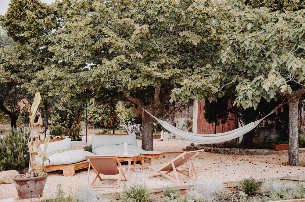 white and brown wooden outdoor lounge chairs near green trees during daytime