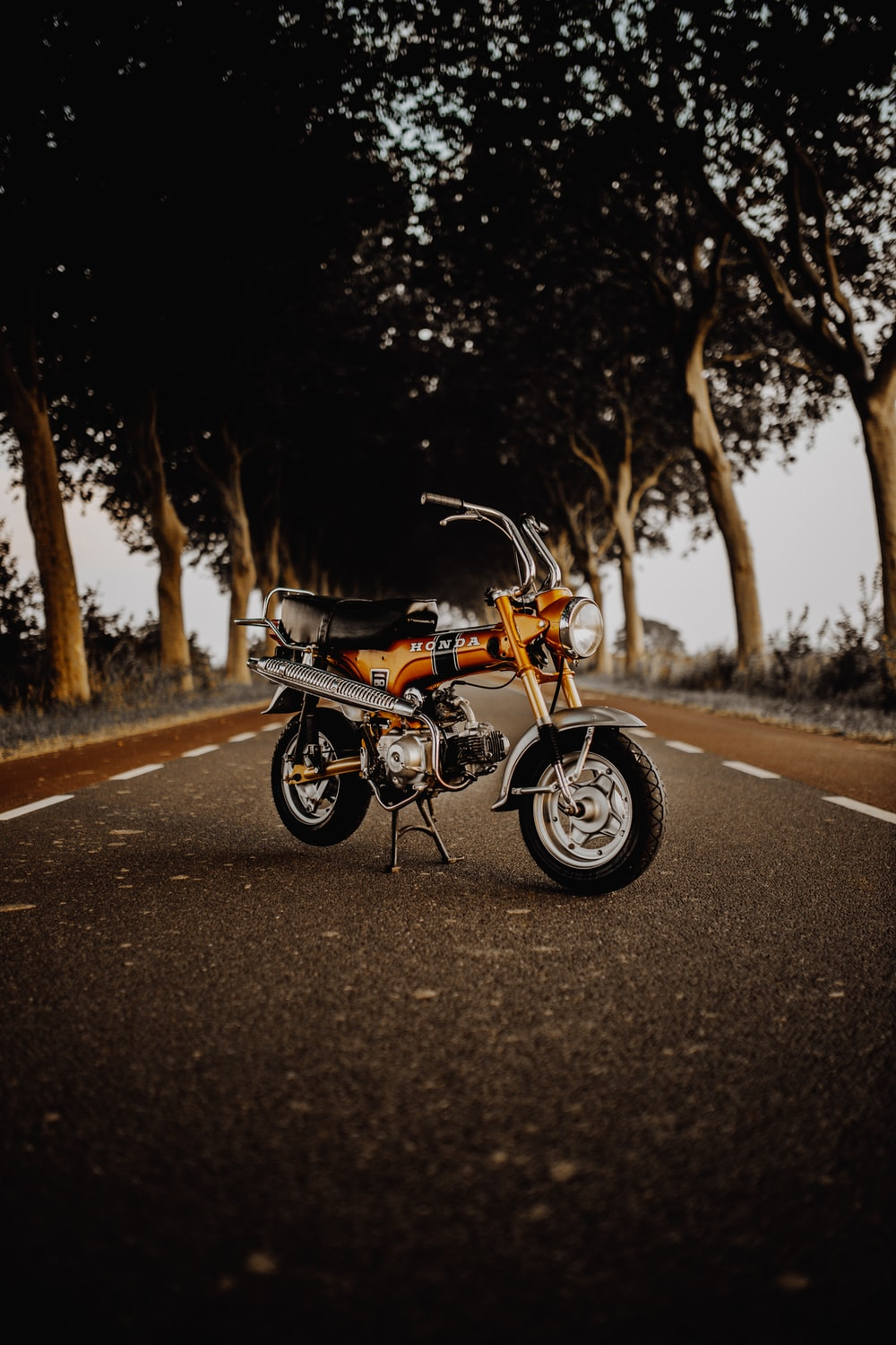 black and brown motorcycle on road during daytime