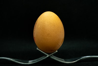 brown egg on stainless steel stand