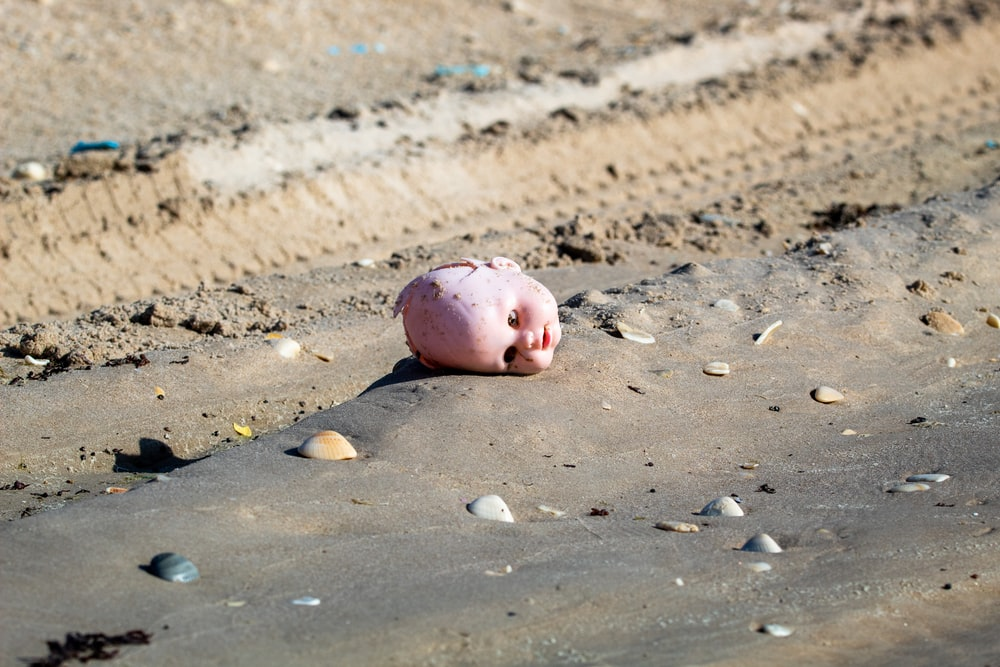 pink pig on brown sand