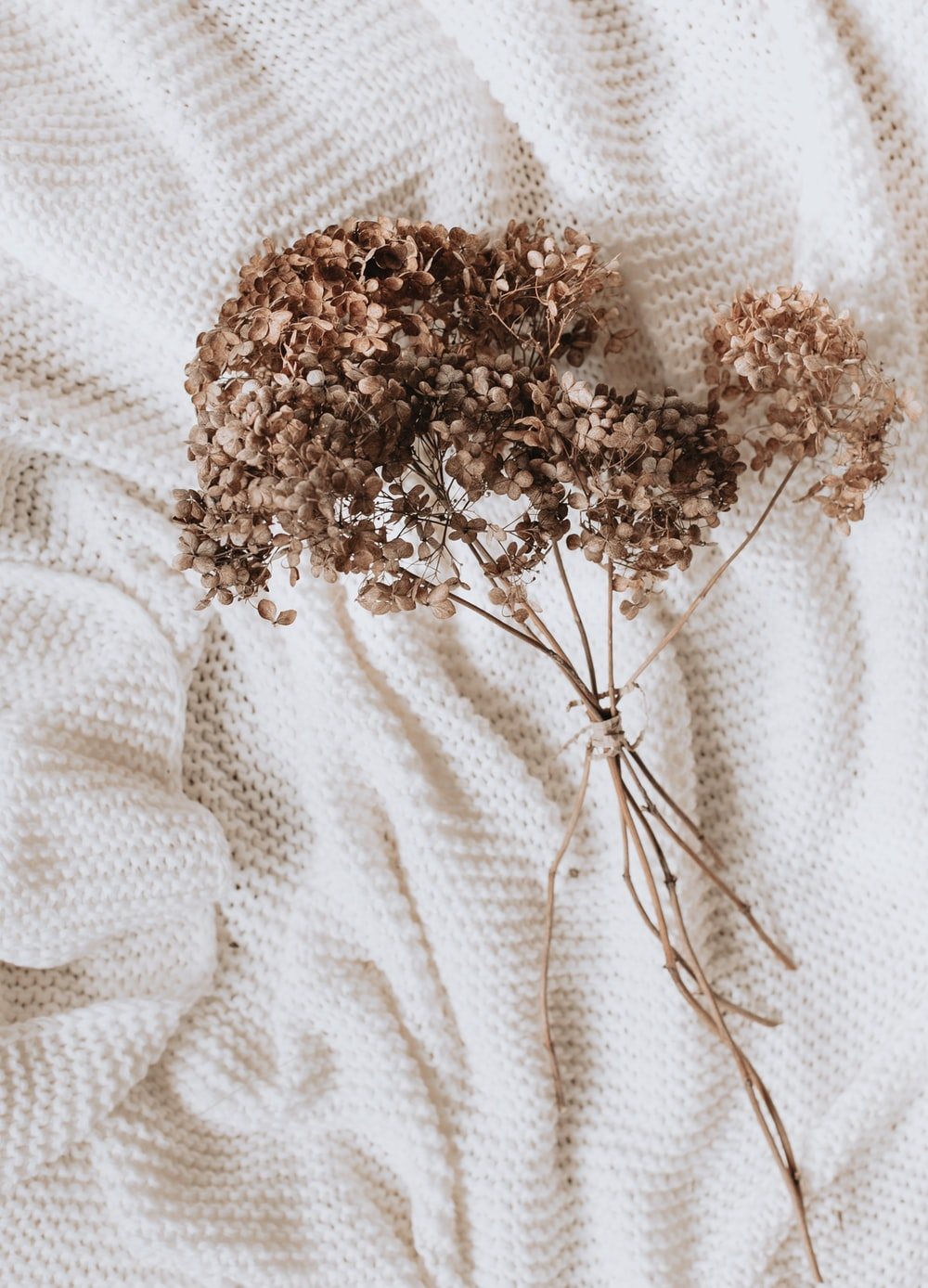 brown flowers on white textile