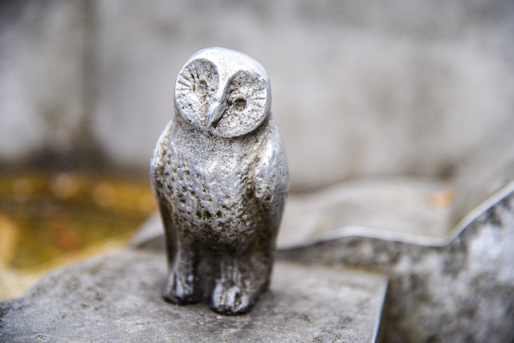 gray ceramic owl figurine on brown wooden table