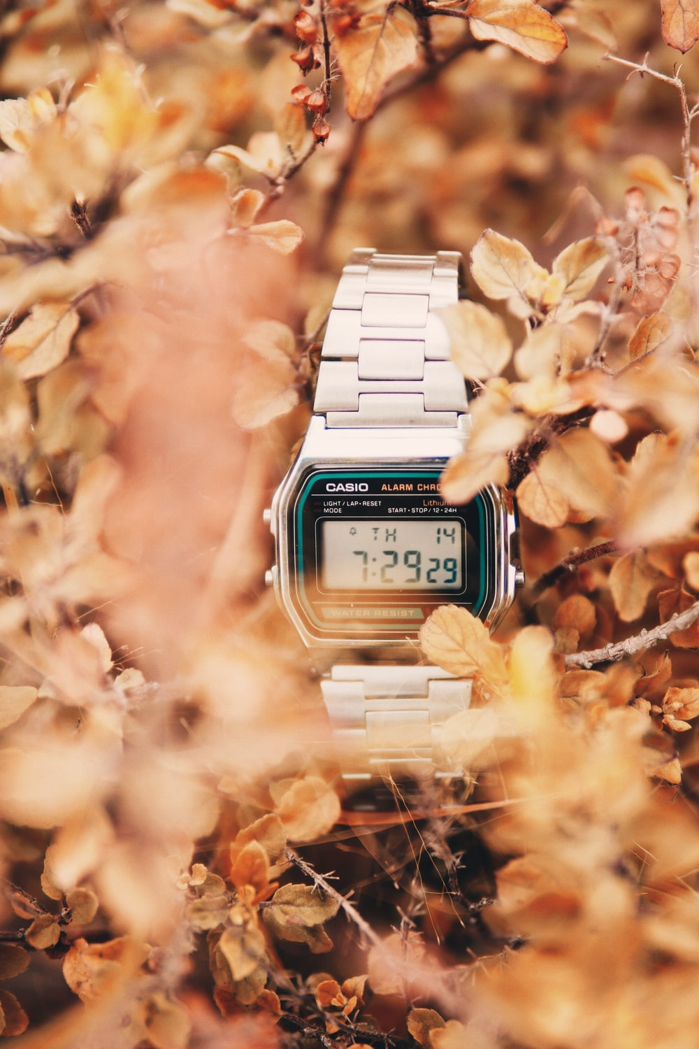 gold and silver casio digital watch