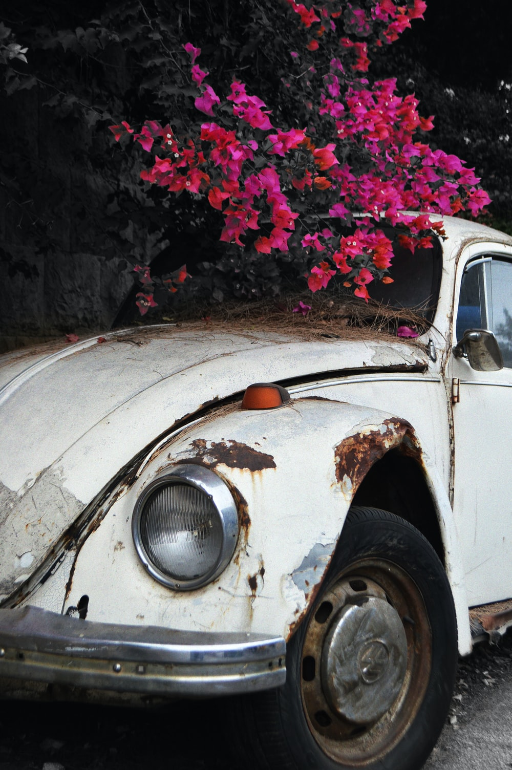 white car with pink flowers