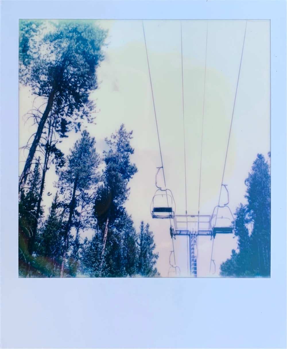 white cable car over green trees