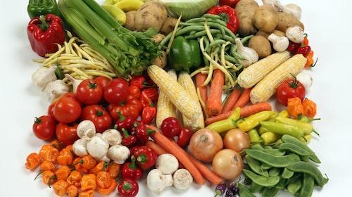 Teacher King's English Speaking Lesson: Vegetables