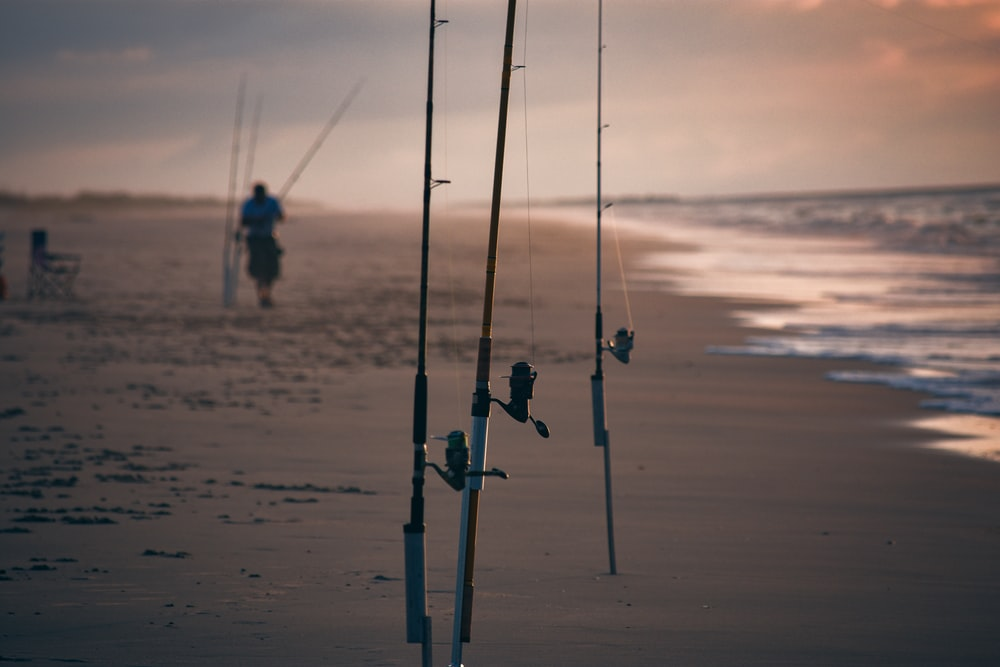 2 person fishing on beach during sunset