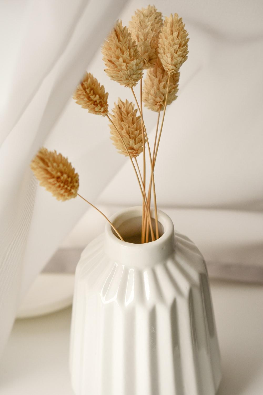 brown and white flower in white ceramic vase