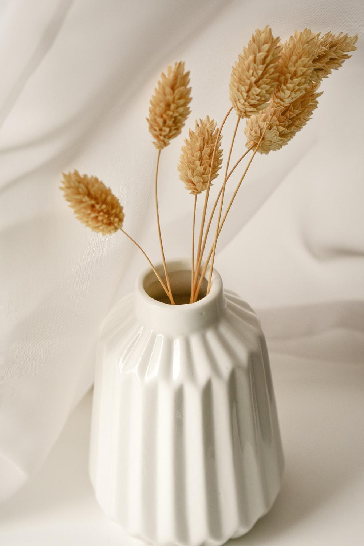 brown flowers in white ceramic vase