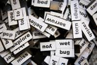 Lost Words words stories