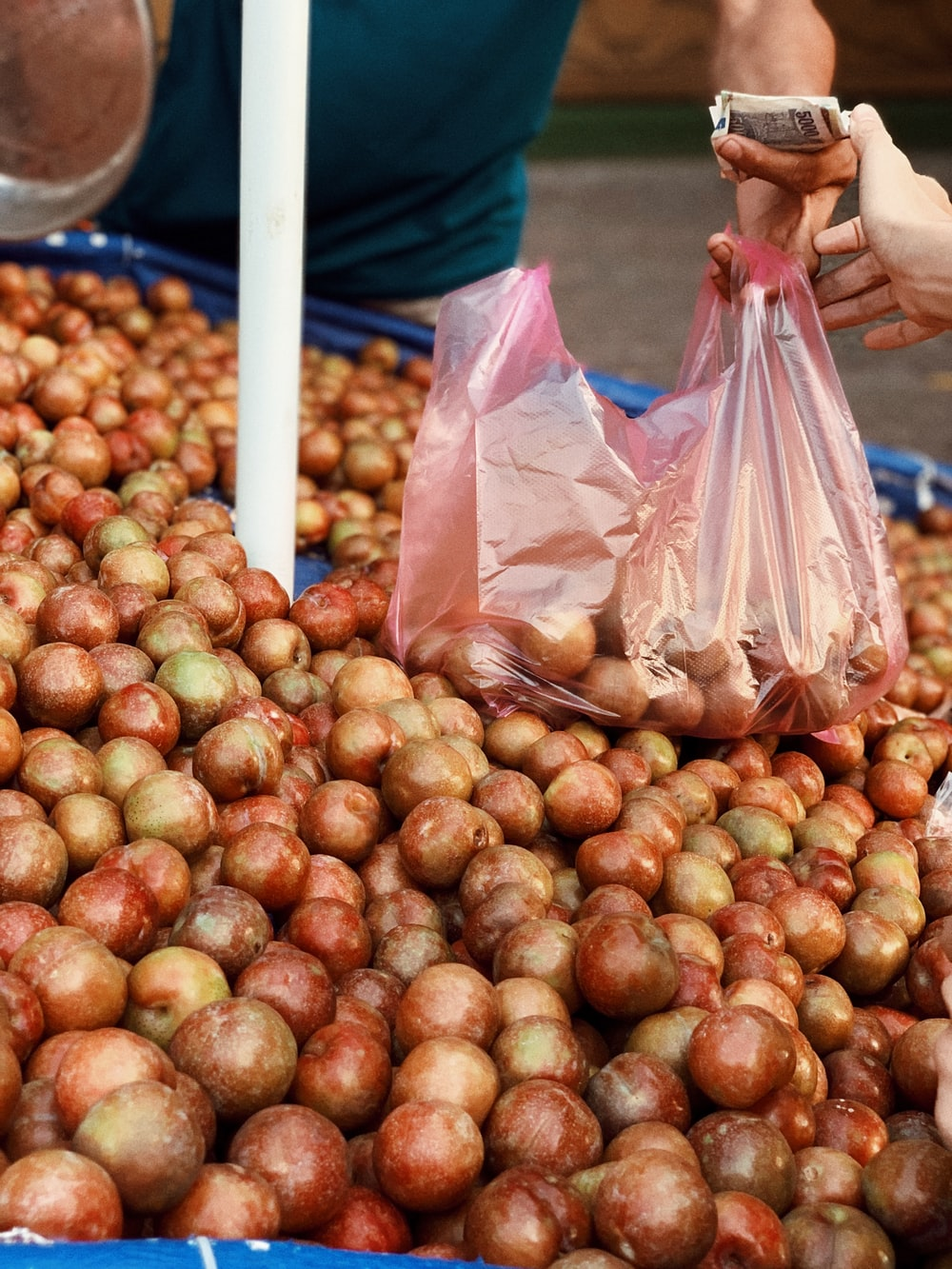 brown round fruits on plastic bags