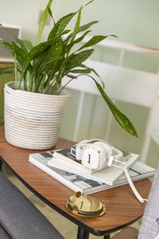white headphones on white book