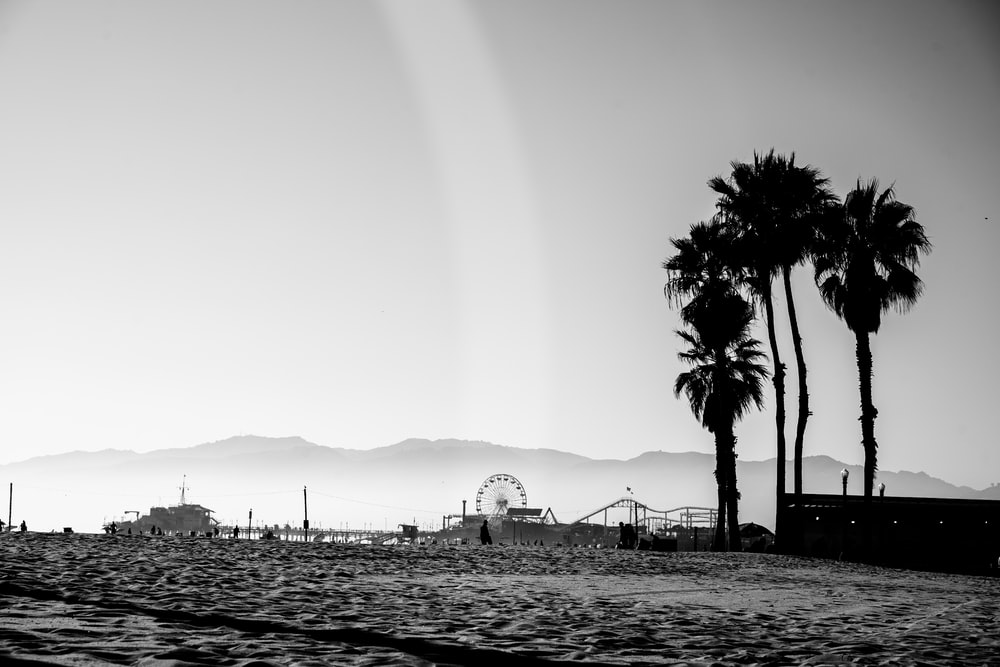grayscale photo of people on beach during daytime