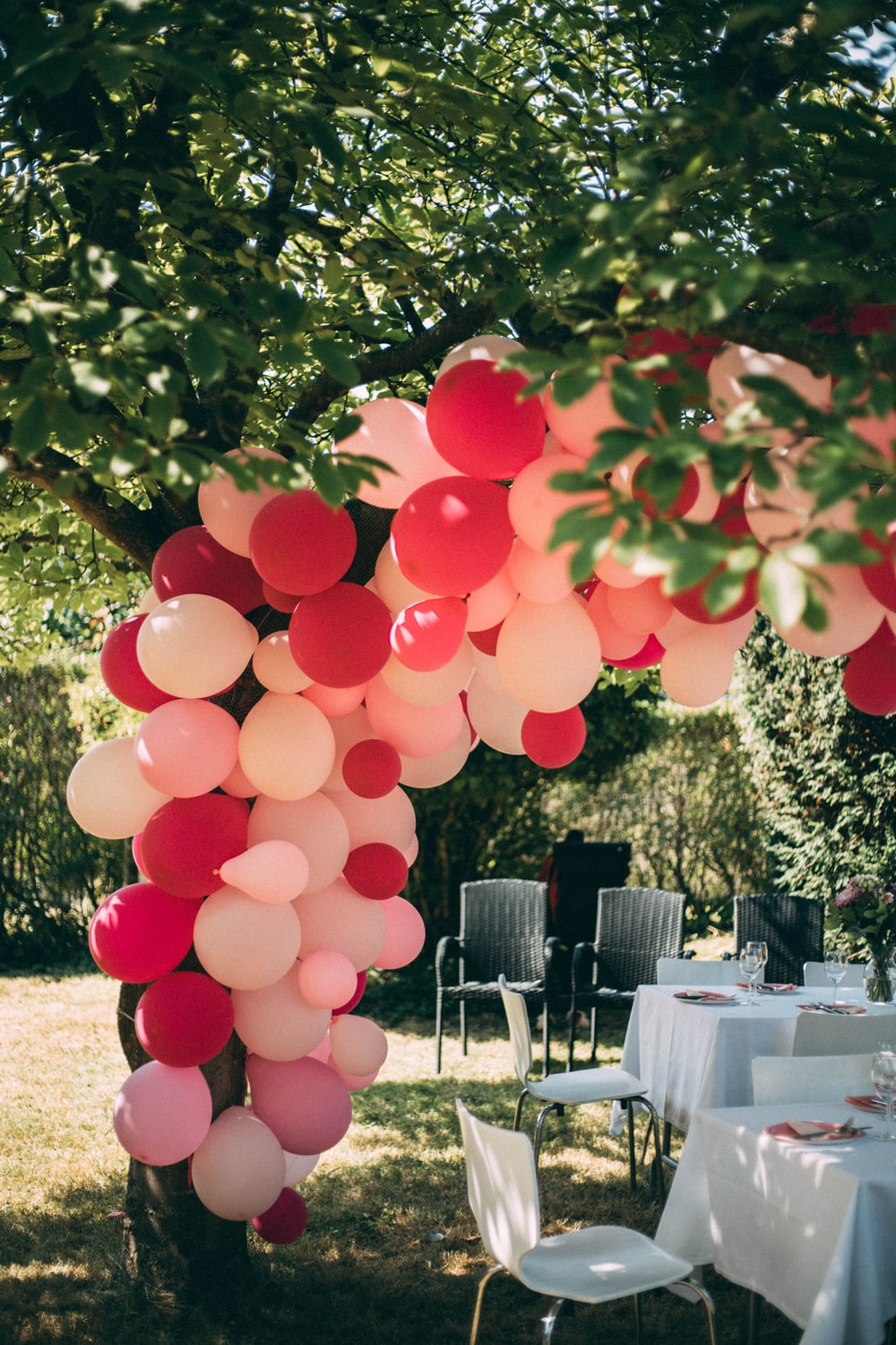 pink and red balloons near green trees during daytime