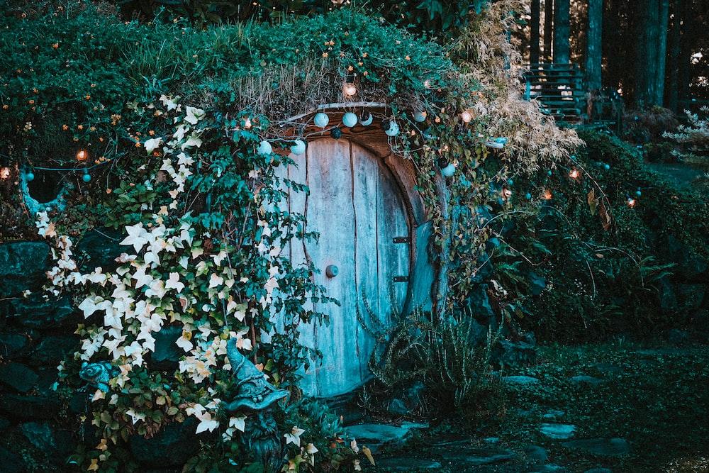 brown wooden door surrounded by green plants