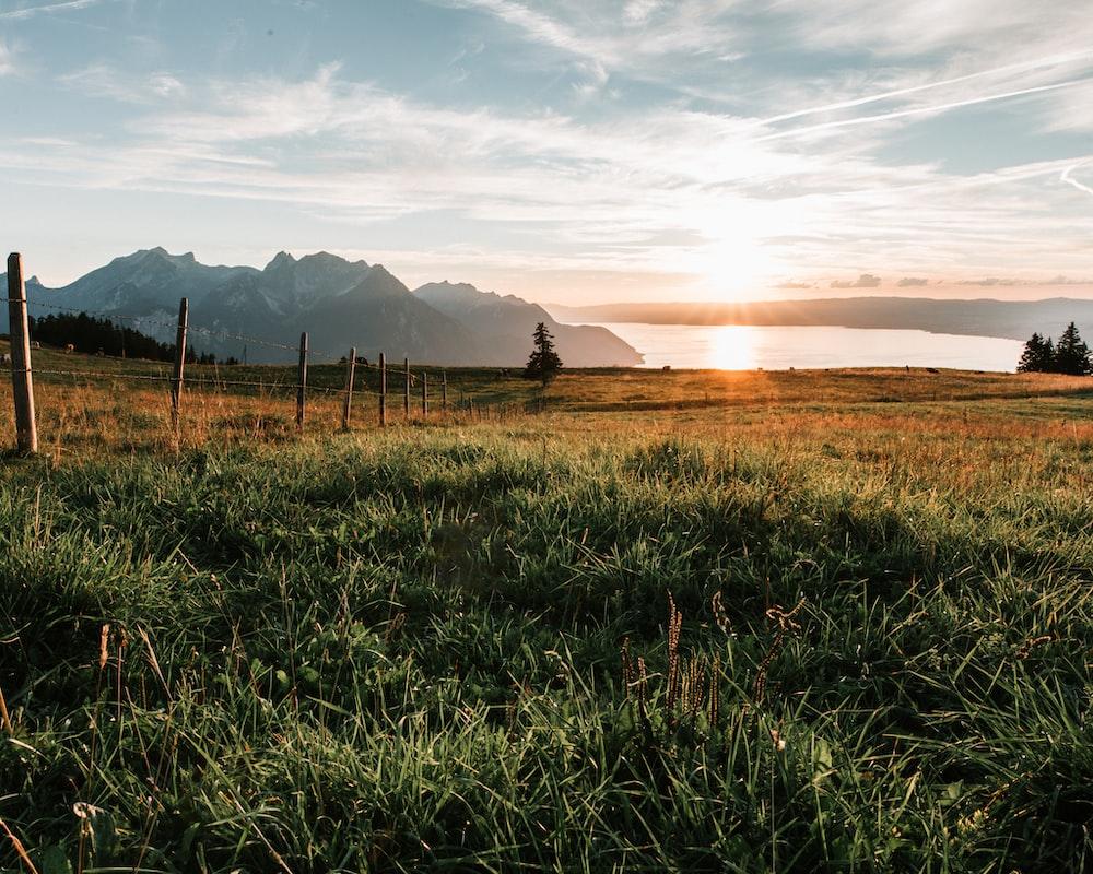 green grass field near mountain during daytime