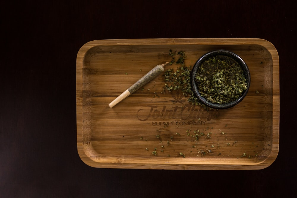 green plant on brown wooden tray