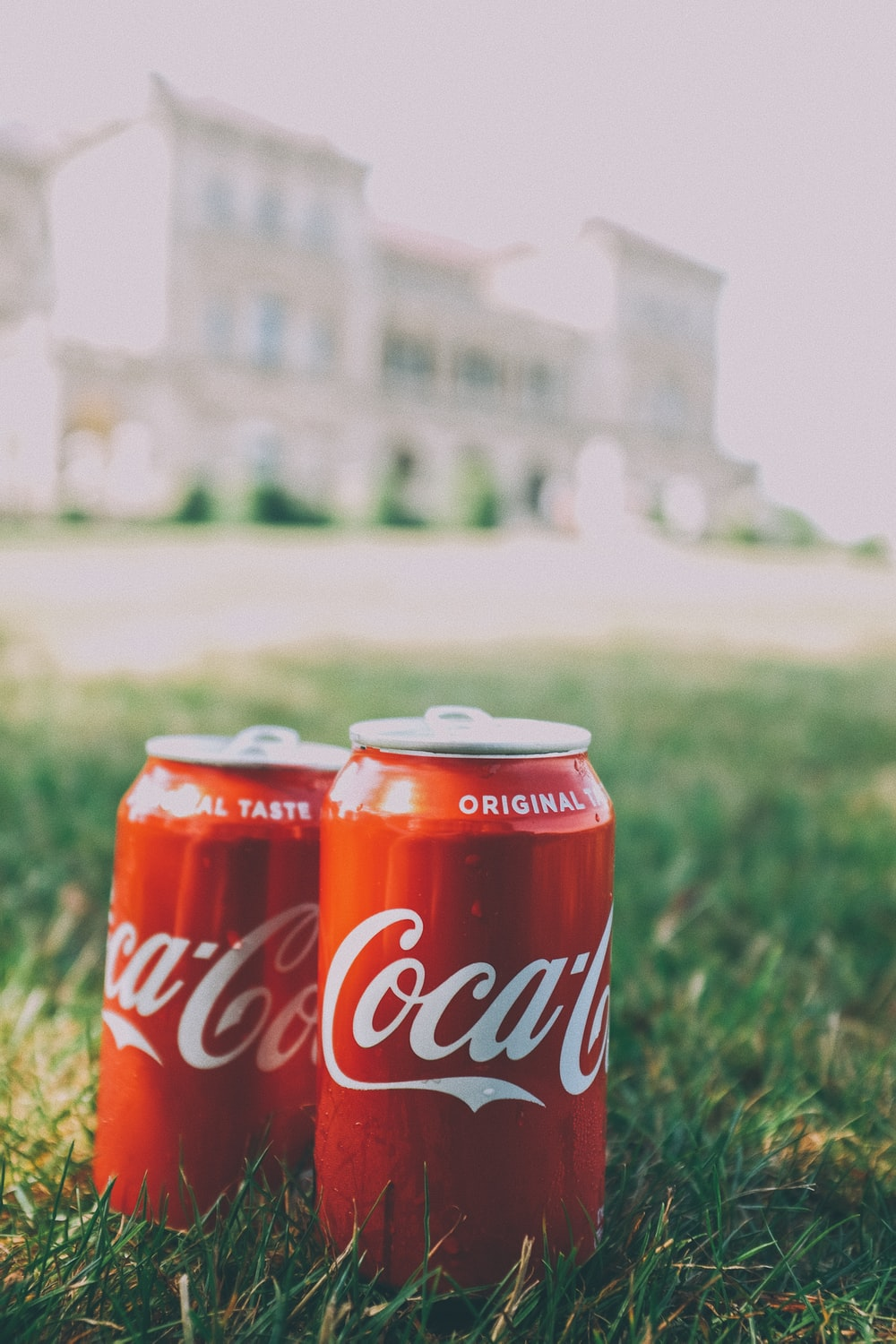 coca cola can on green grass during daytime