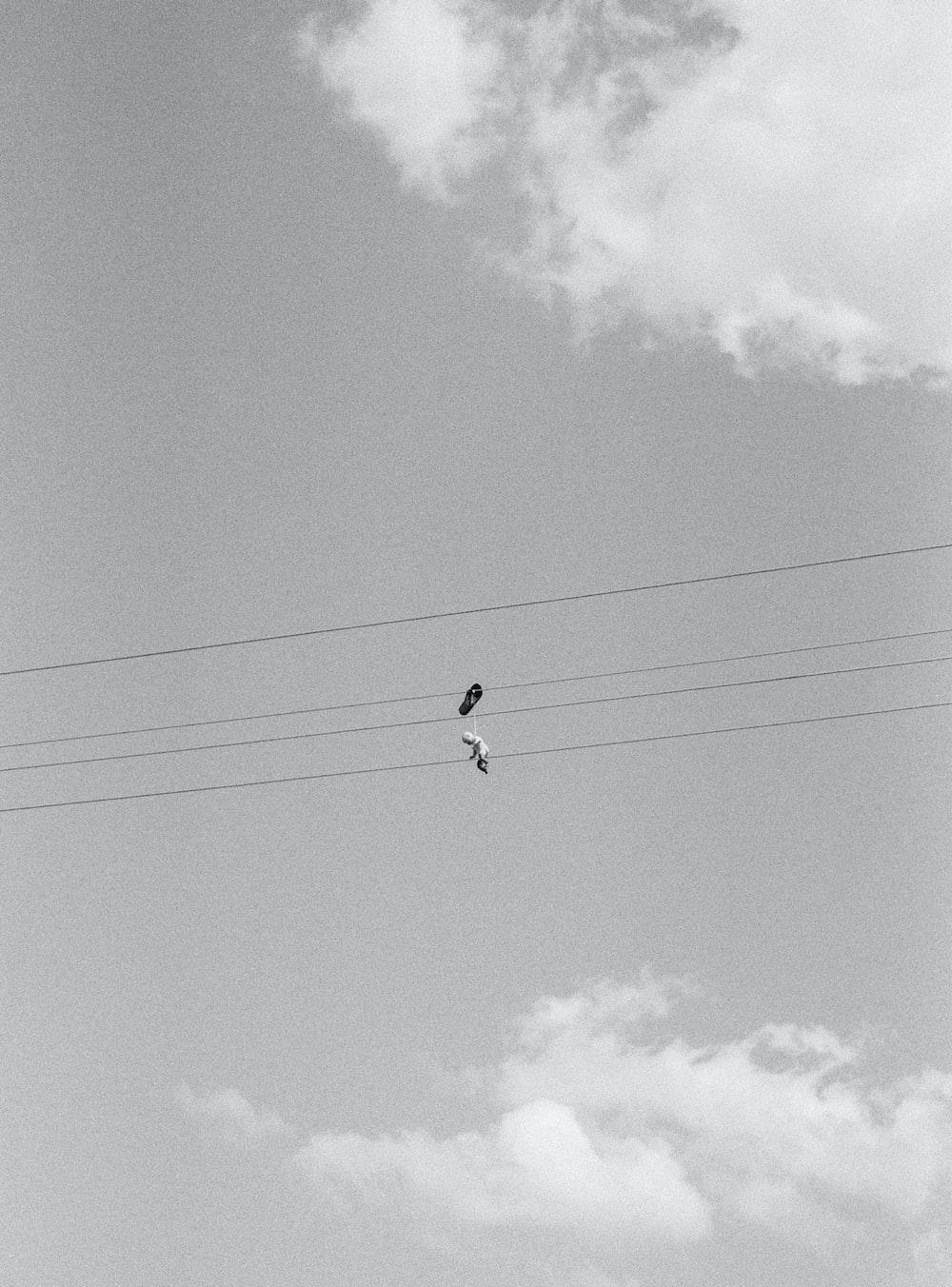 black bird flying under white clouds during daytime