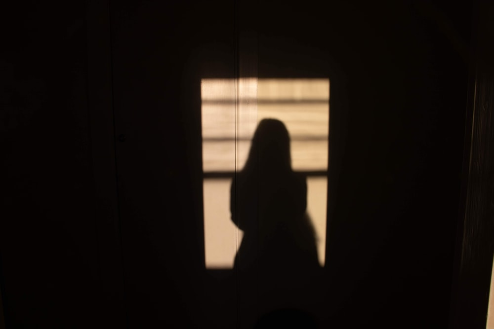silhouette of person sitting on window