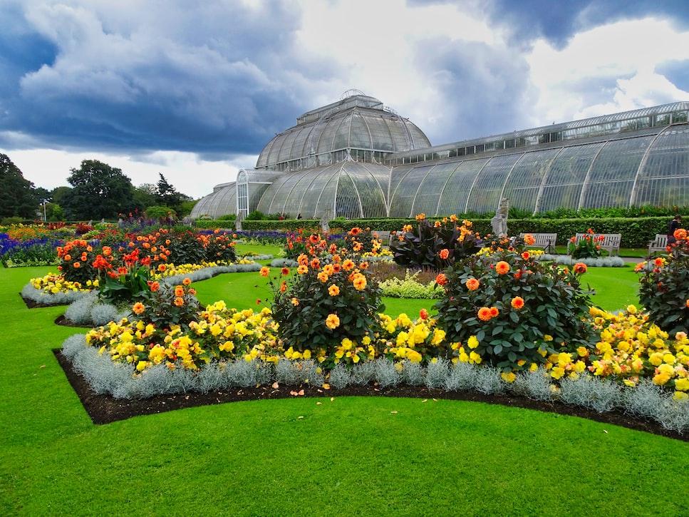 Kew gardens - London in February