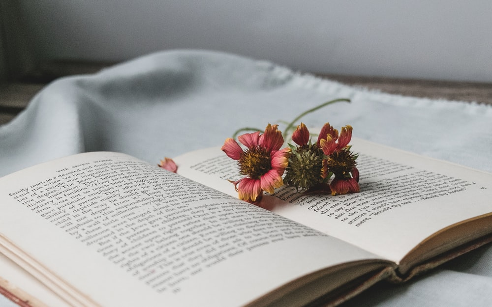red and yellow flower on book page