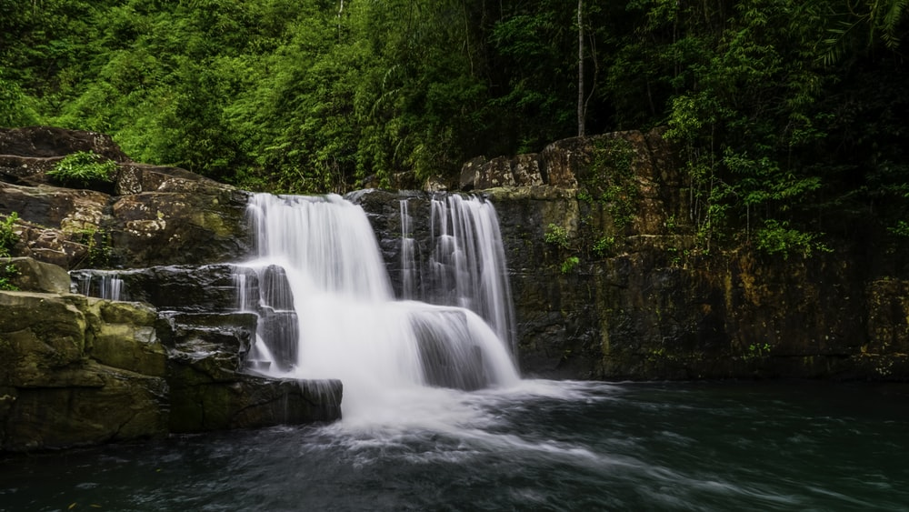 waterfalls in forest during daytime