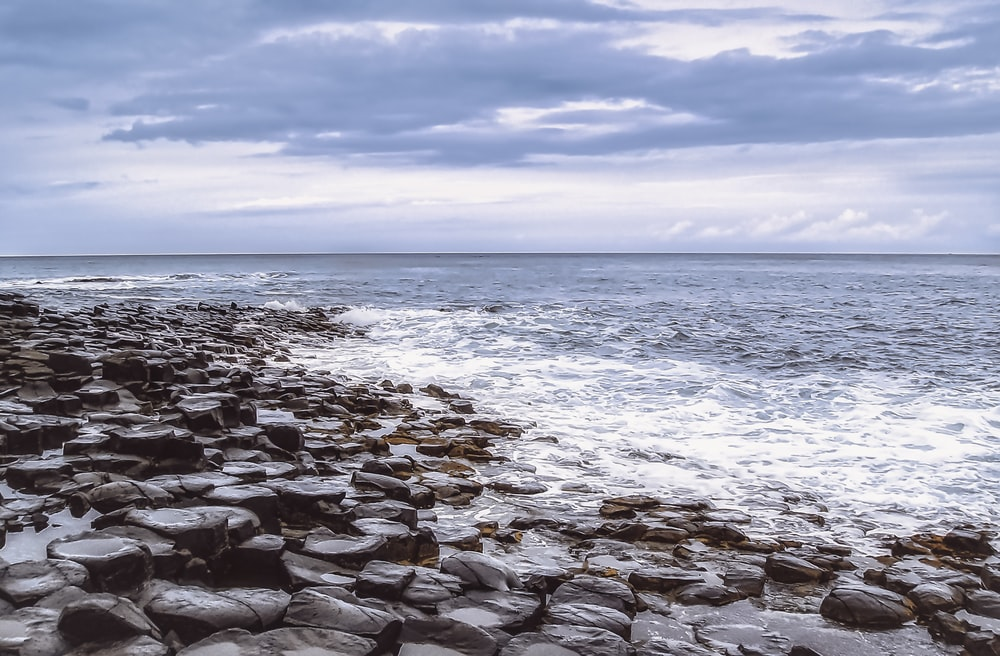 rocky shore under blue sky during daytime