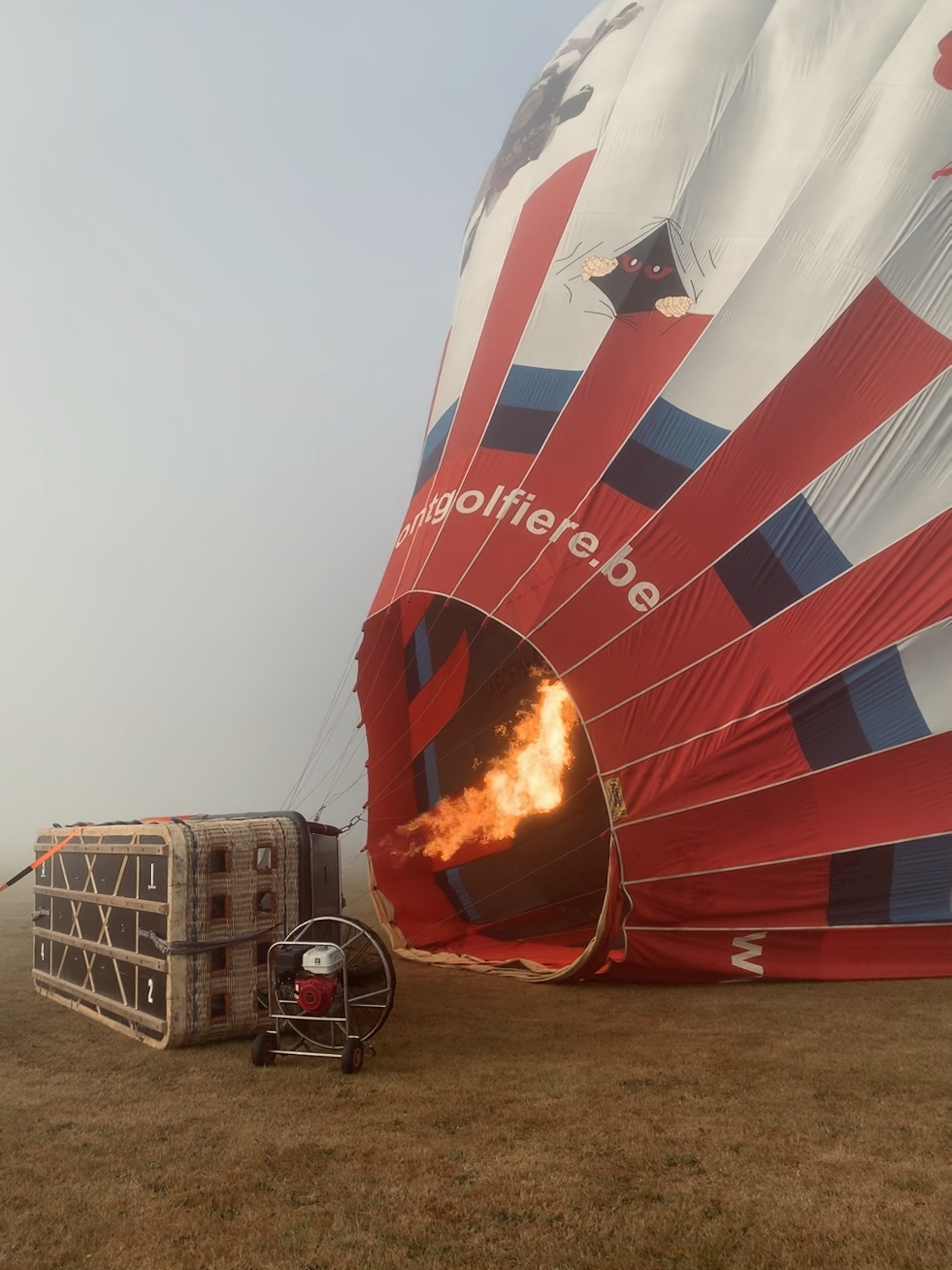 red blue and white hot air balloon