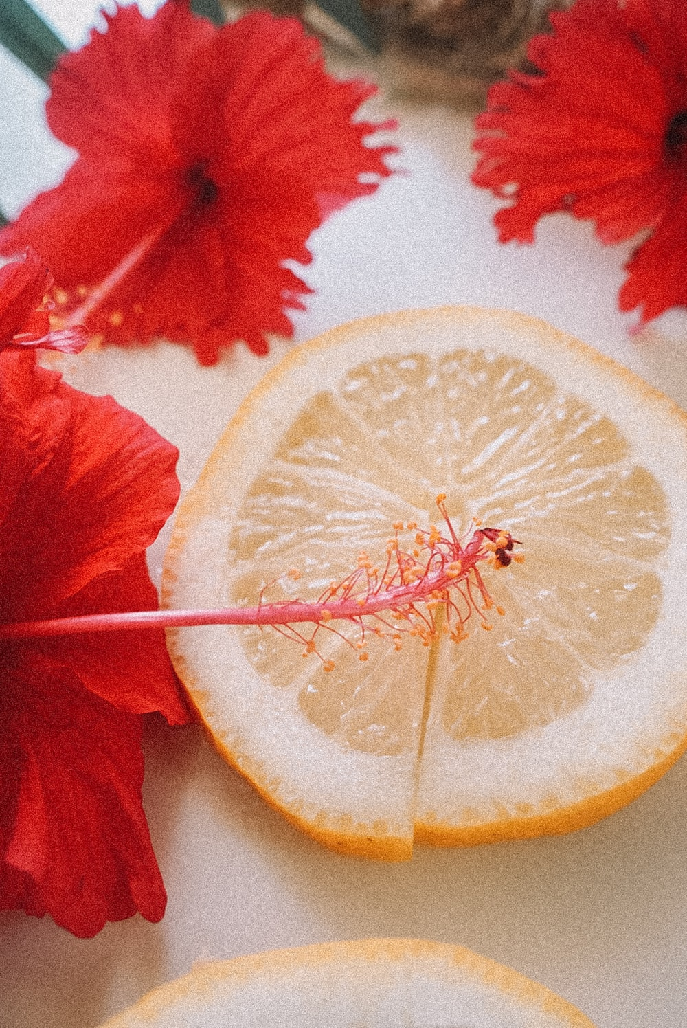 red flower with yellow lemon
