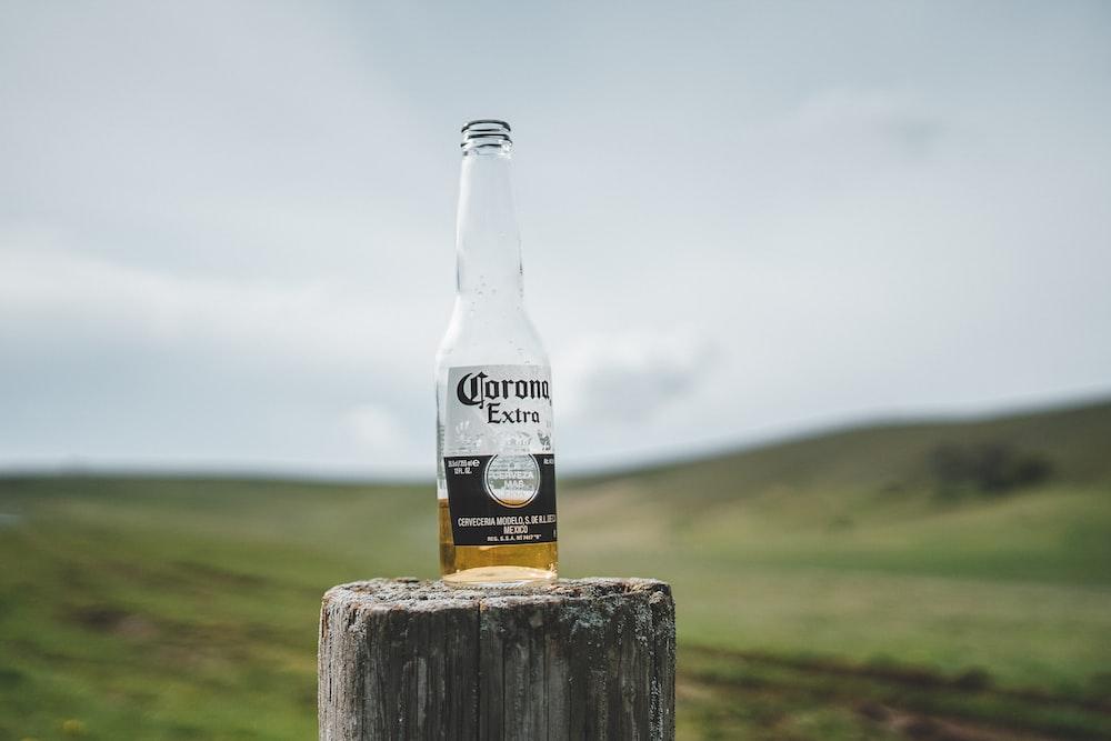 corona extra beer bottle on brown wooden log