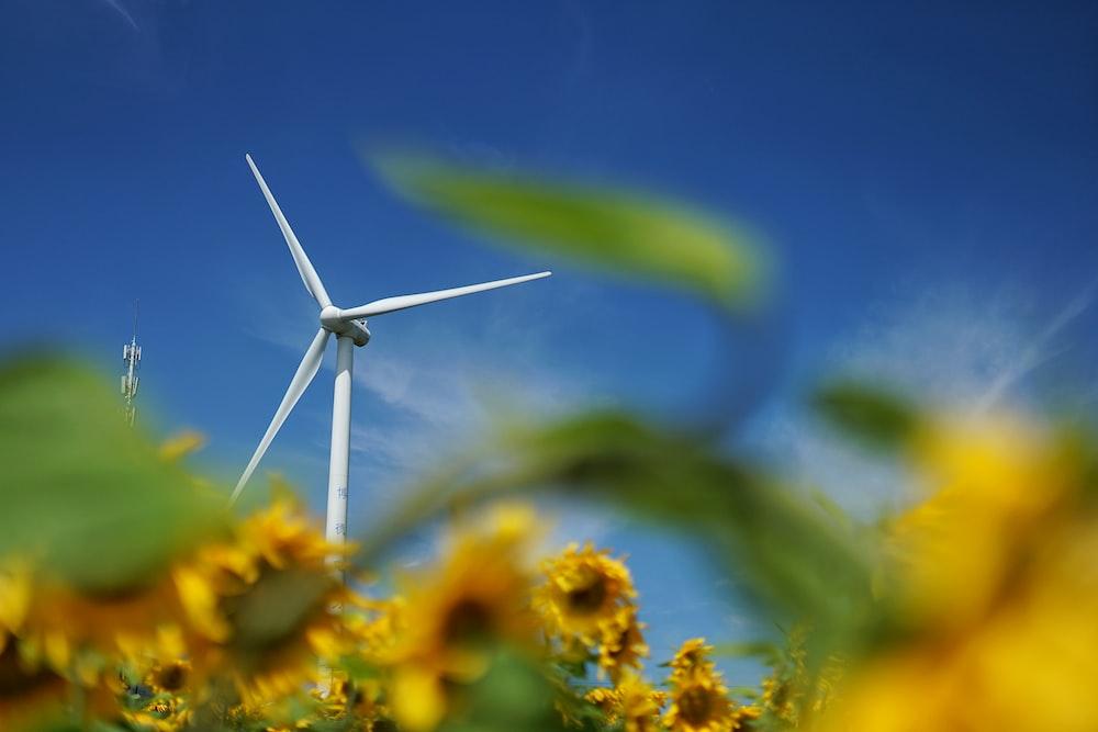 white wind turbine on yellow flower