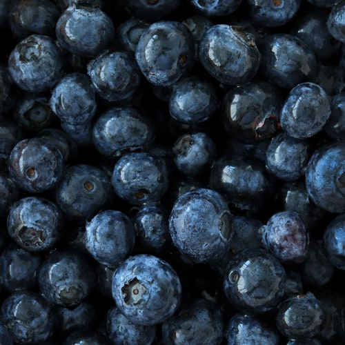 a bunch of blueberries.