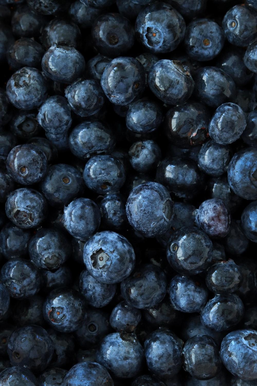 black round fruits on white background