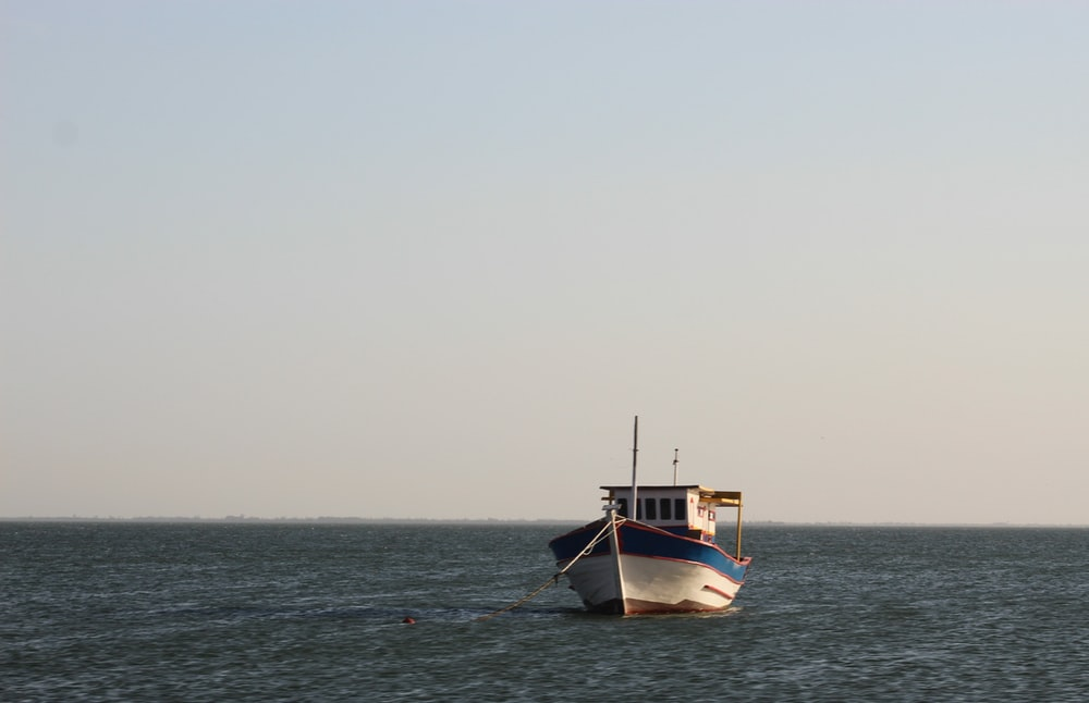 white and brown boat on sea during daytime