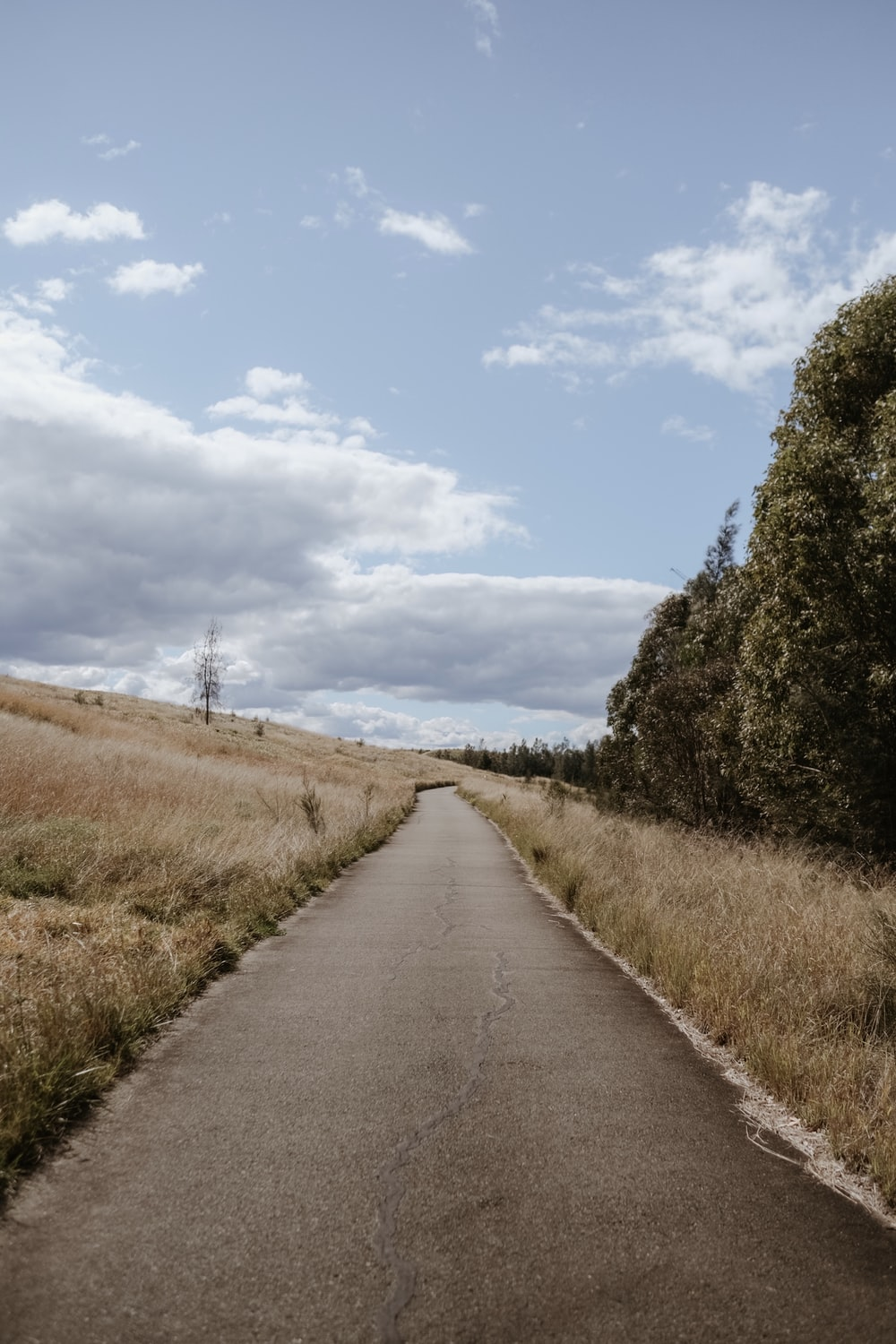 gray concrete road between green grass field under blue sky during daytime