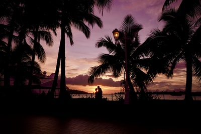 silhouette of people standing near body of water during sunset tahiti teams background