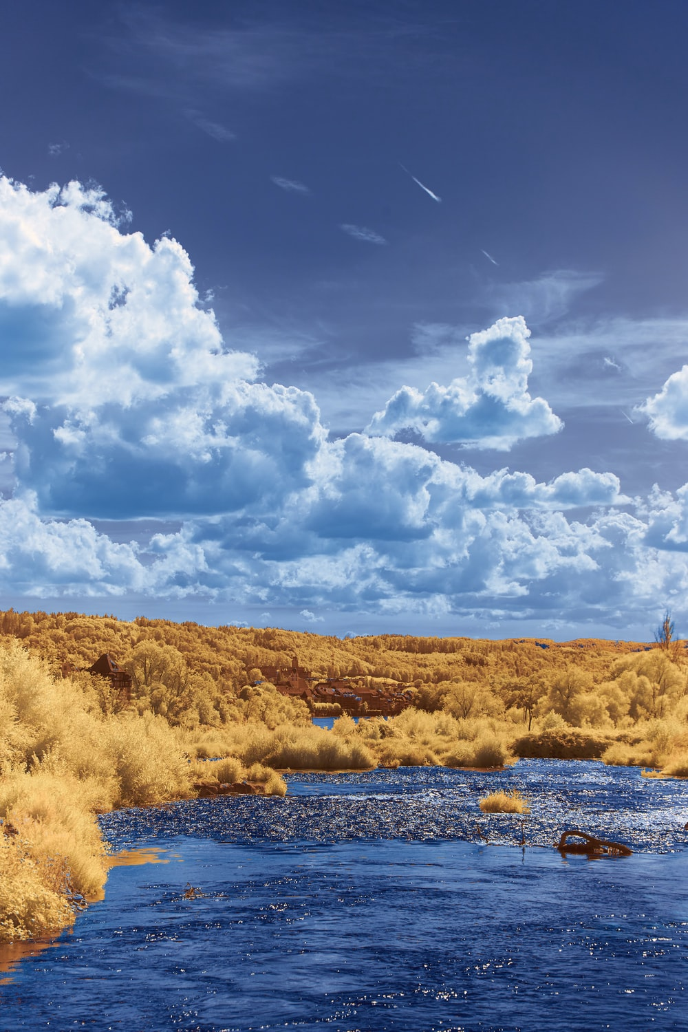 brown grass field near body of water under white clouds and blue sky during daytime