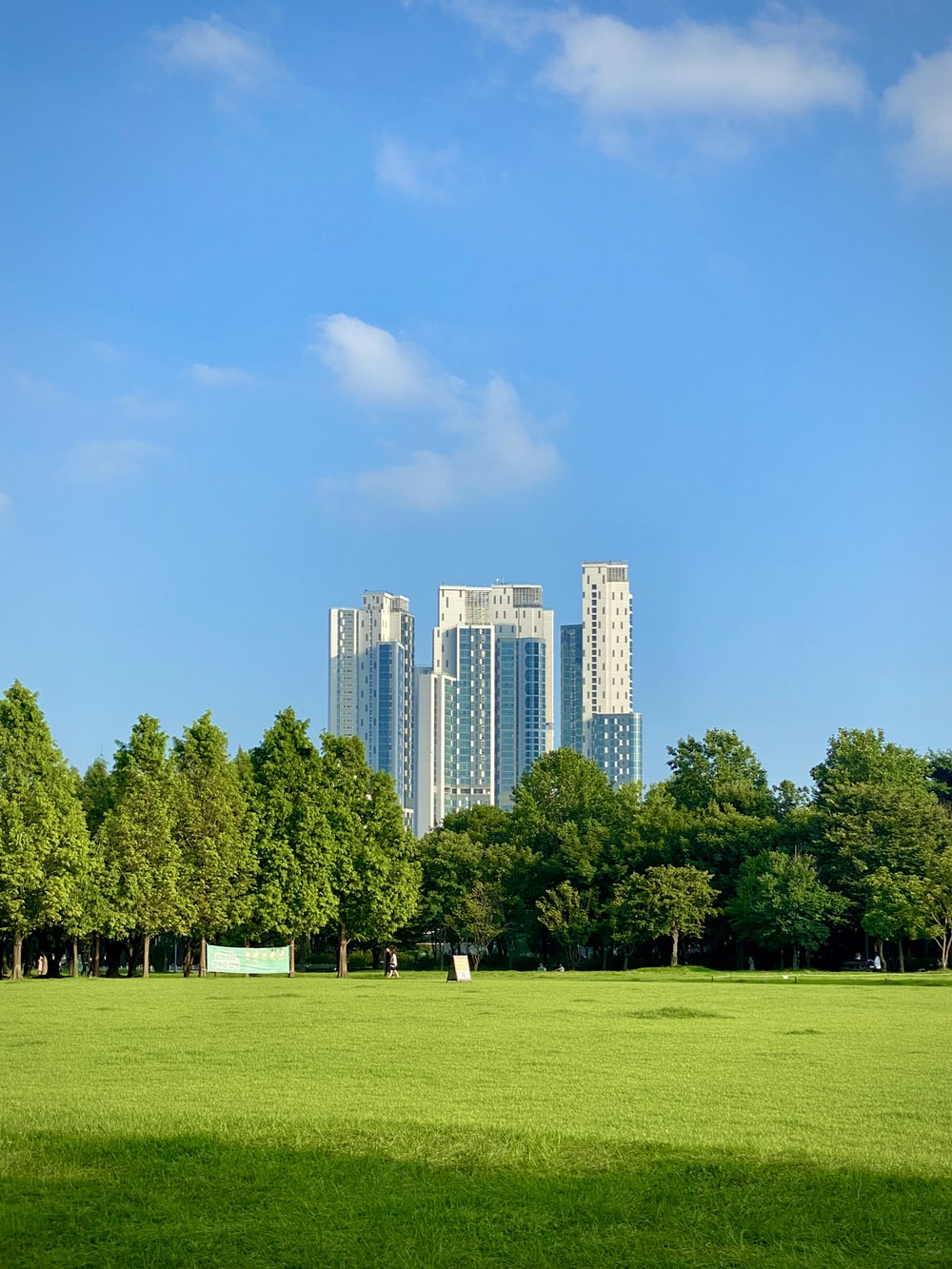 green grass field with trees and high rise buildings in distance